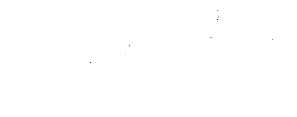Andrea Birk Fotografie